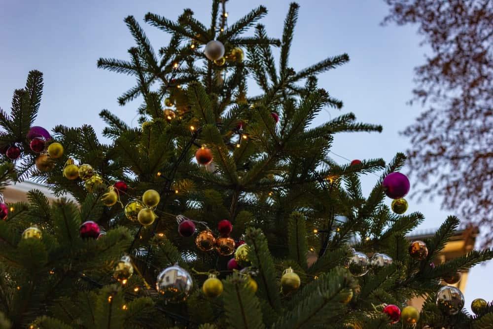 Top 5 Erlebnis-Ideen im Dezember für dich und dein Herzblatt